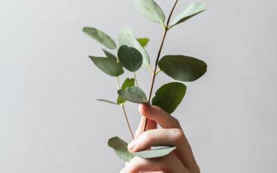 Duurzaam en ecologisch werken, PAS en zijn official dealer.